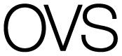 curvy_ovs_logo