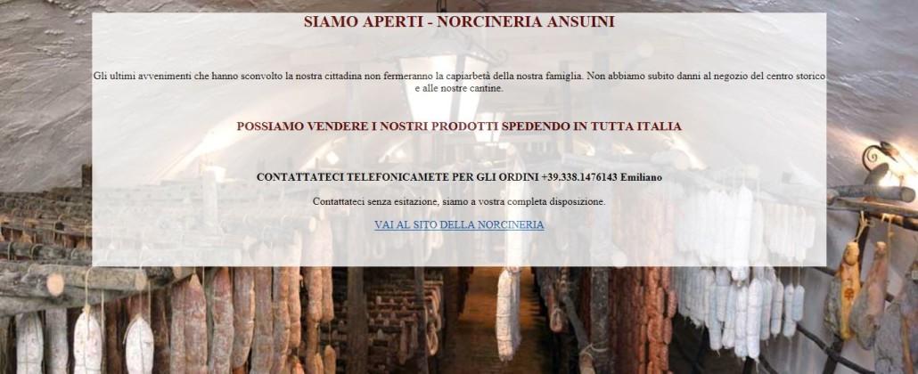 jordskaelv_norcia_ansuini