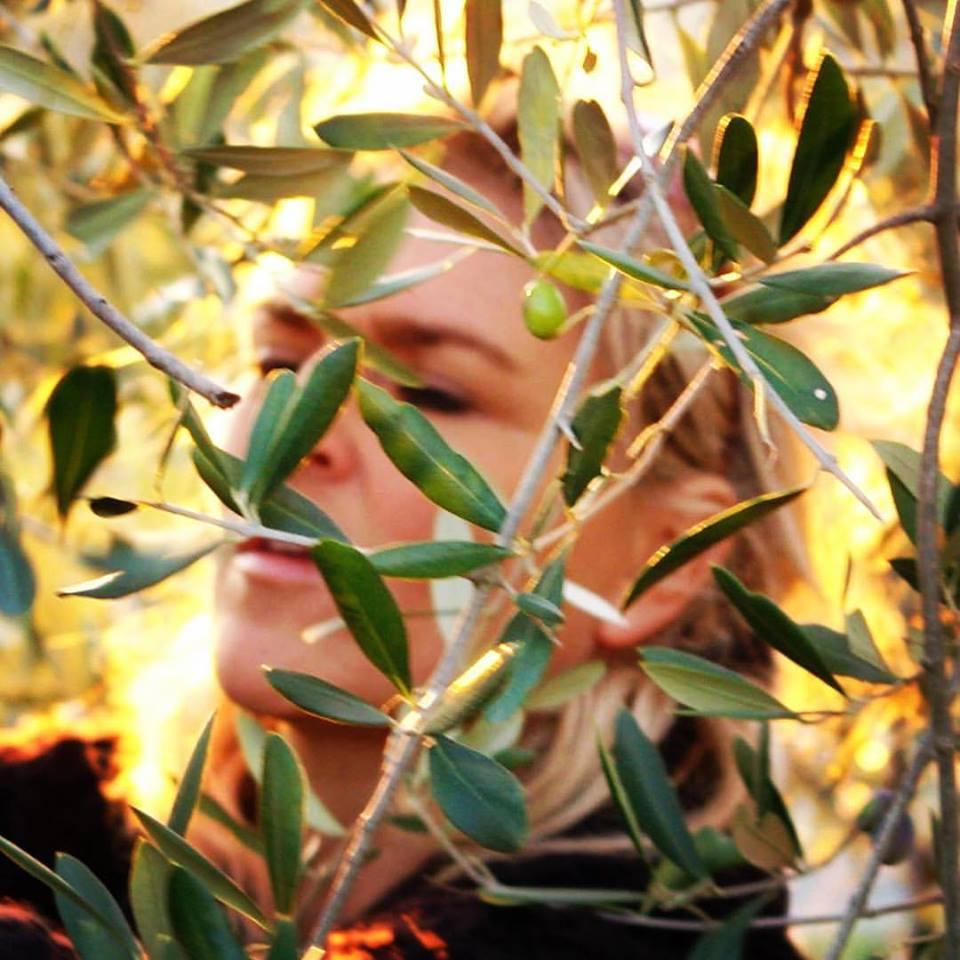 søs_olivenolie_umbria_8